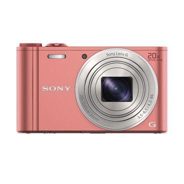 DSC-WX350_pink